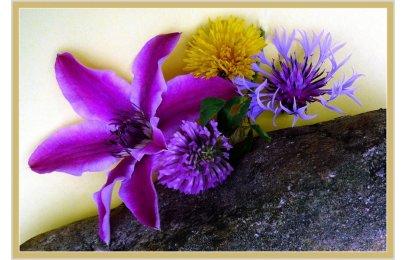 Variace s květy