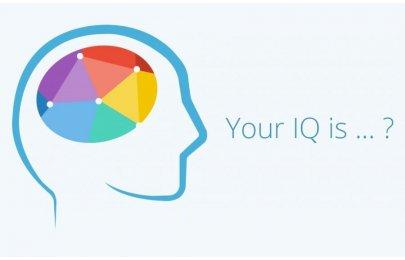 Testování IQ 2019