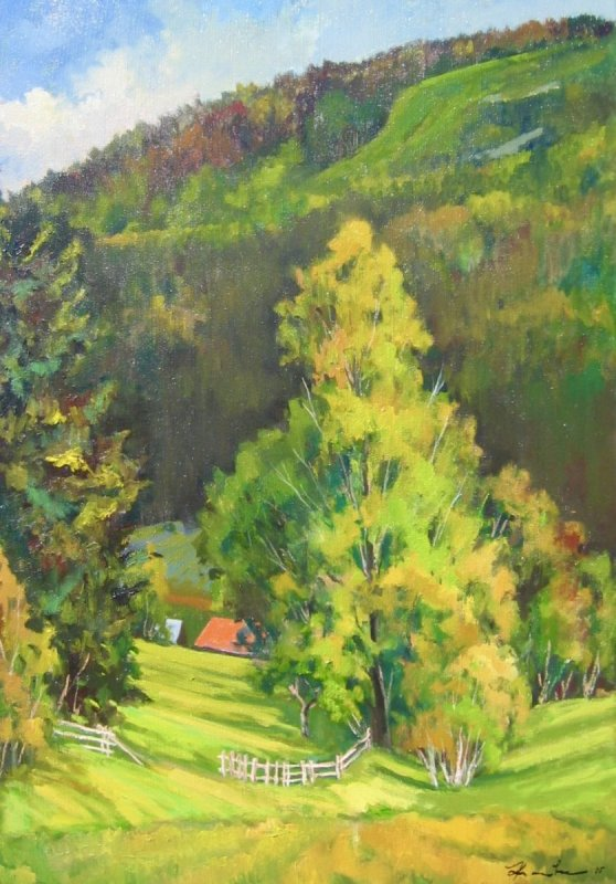 Horní údolí
