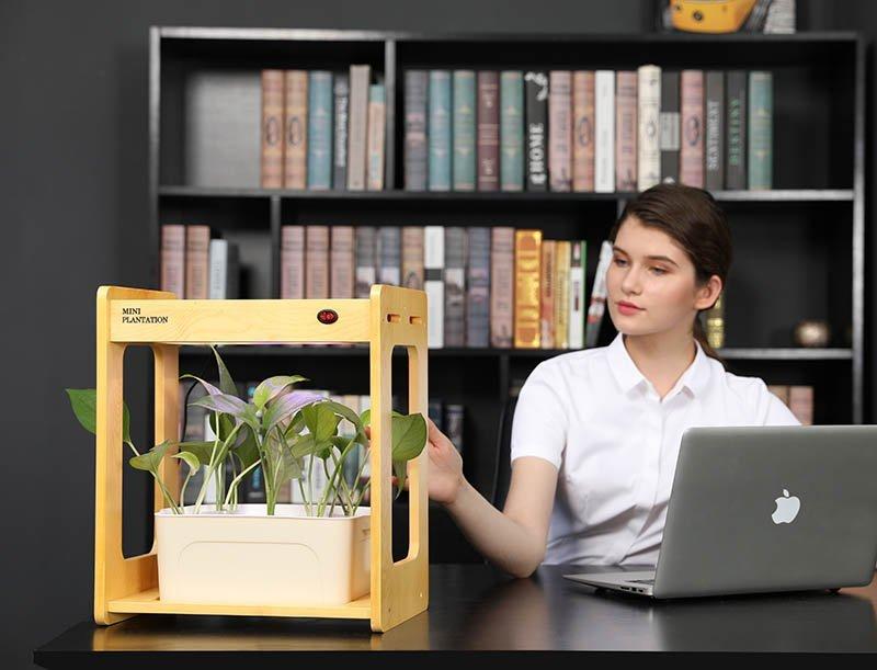 Dřevěný All-in-One hydroponický květináč MXM AV-20