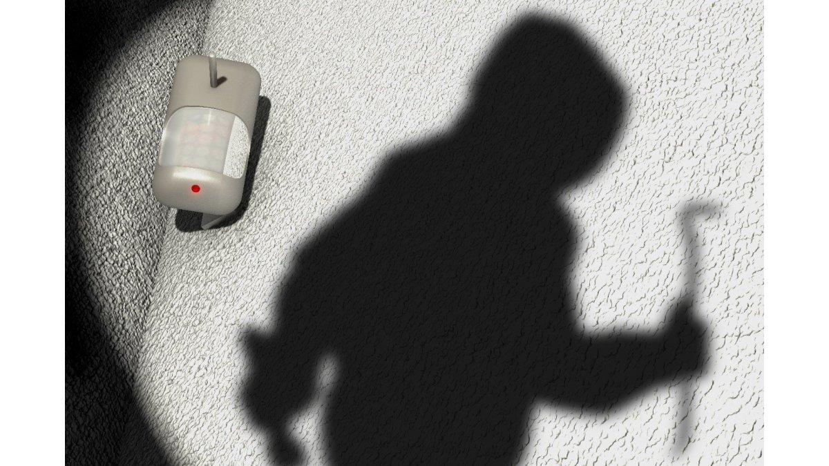 Bildbewegungserkennung vs. Erkennung durch PIR-Sensor