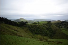 cesta z Dunedin do Otago Peninsula