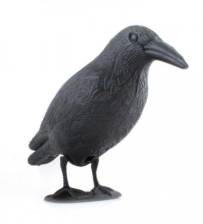 Odpuzovač holubů a ptáků havran